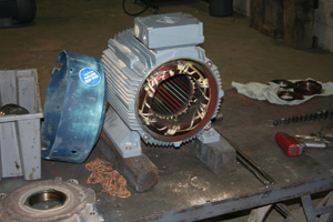 Electric Motor Rebuild